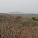 Kurdistan 10.4.2012_44